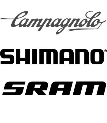 Campagnolo of Shimano